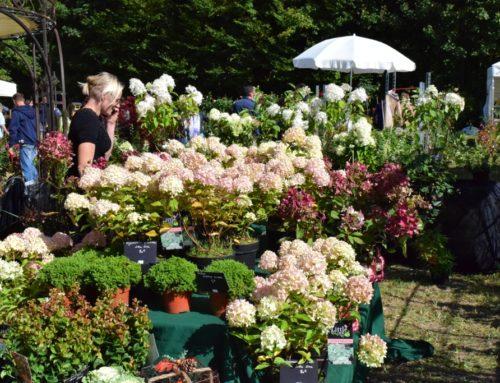 Journées des Plantes Jossigny – Edition Automne 2018